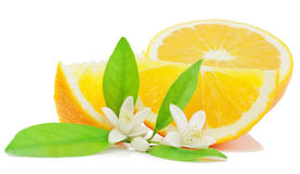 Sinaasappel, blad, bloem en plak Royalty-vrije Stock Afbeeldingen