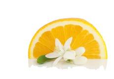 Sinaasappel, bloem en plak. Stock Afbeeldingen