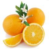 Sinaasappel, bloem en plak. Royalty-vrije Stock Fotografie