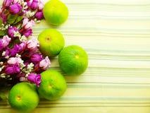 Sinaasappel & bloemachtergrond met groene strepenachtergrond Stock Foto's