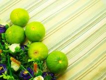 Sinaasappel & bloemachtergrond met groene strepenachtergrond Royalty-vrije Stock Afbeelding
