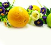 Sinaasappel & bloemen op een witte achtergrond Royalty-vrije Stock Afbeeldingen