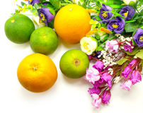Sinaasappel & bloemen op een witte achtergrond Royalty-vrije Stock Afbeelding