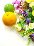 Sinaasappel & bloemen op een witte achtergrond Stock Afbeeldingen