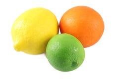 Sinaasappel, citroen, kalk Stock Foto