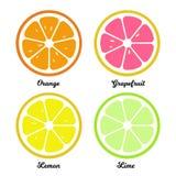 Sinaasappel, citroenkalk en grapefruitplakken Vlakke voedselillustratie royalty-vrije stock foto's