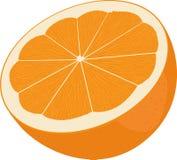 Sinaasappel die in de helft wordt gesneden Citrusvrucht op witte achtergrond wordt geïsoleerd die vector illustratie