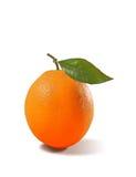 Sinaasappel die met verlof wordt geïsoleerd Stock Foto