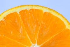 Sinaasappel in een macromening Stock Afbeeldingen