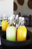 Sinaasappel en appelsapfles Stock Afbeelding