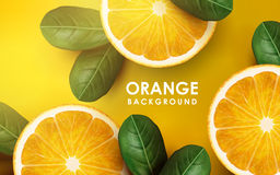 Sinaasappel en Bladeren vector illustratie