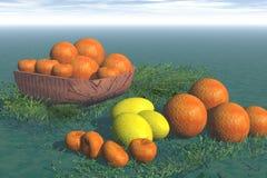 Sinaasappel en citroenen Royalty-vrije Stock Foto's