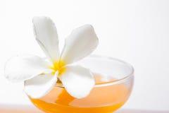 sinaasappel en glas met sap Royalty-vrije Stock Fotografie