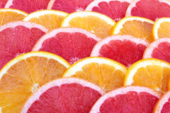 Sinaasappel en grapefruit royalty-vrije stock foto