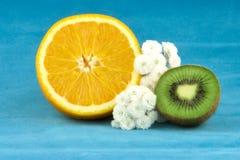 Sinaasappel en kiwi Stock Fotografie