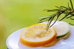 Sinaasappel en limon plak met rozemarijn stock afbeelding