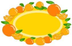 Sinaasappel en mandarijnvruchten etiketvector Stock Foto's