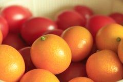 Sinaasappel en tomaat Royalty-vrije Stock Foto's