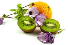 Sinaasappel, madeliefjes en kiwifruit Stock Foto's