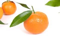 Sinaasappel met blad Stock Foto