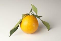 Sinaasappel met bladeren royalty-vrije stock fotografie