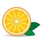 Sinaasappel met groene bladeren op een witte achtergrond Vector Royalty-vrije Stock Afbeelding