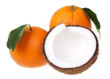 Sinaasappel met kokosnoot stock fotografie
