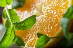 Sinaasappel met muntblad Stock Fotografie