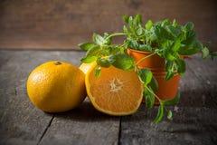 Sinaasappel met muntblad Stock Foto's