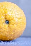 Sinaasappel met waterdalingen op het huidclose-up op een lichte backgrou Royalty-vrije Stock Foto's