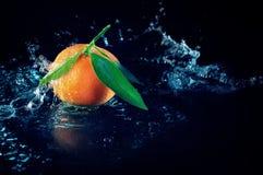 Sinaasappel op een zwarte achtergrond met water Stock Foto's