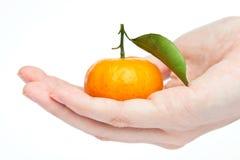 Sinaasappel op hand Royalty-vrije Stock Foto's