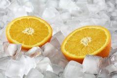 Sinaasappel op ijs Stock Fotografie