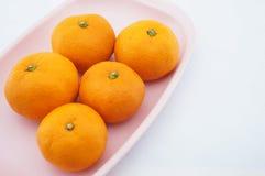 Sinaasappel op roze dienblad Royalty-vrije Stock Afbeelding