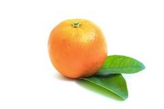 Sinaasappel op witte achtergrond wordt geïsoleerd die Royalty-vrije Stock Afbeelding