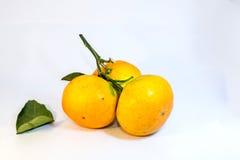 Sinaasappel over witte achtergrond Royalty-vrije Stock Afbeeldingen