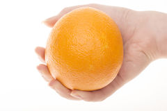 Sinaasappel ter beschikking Stock Foto