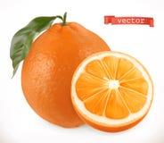 Sinaasappel Vers fruit 3d vectorpictogram vector illustratie