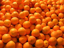 Sinaasappelen. Royalty-vrije Stock Afbeelding