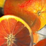 Sinaasappelen Royalty-vrije Illustratie