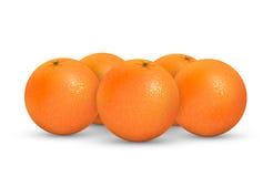 Sinaasappelen Stock Foto