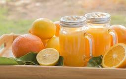 Sinaasappelen, citroenen, sap Stock Afbeeldingen
