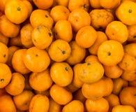 Sinaasappelen of Citrusvrucht voor verkoop Stock Foto