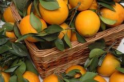 Sinaasappelen in de mand Royalty-vrije Stock Fotografie