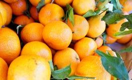Sinaasappelen in de markt voor verkoop Royalty-vrije Stock Foto's