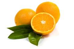Sinaasappelen die op wit worden geïsoleerdo Royalty-vrije Stock Afbeeldingen