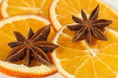 Sinaasappelen en anijsplant Royalty-vrije Stock Foto