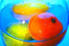Sinaasappelen en citroenen stock fotografie