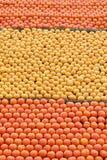 Sinaasappelen en citroenen royalty-vrije stock afbeelding