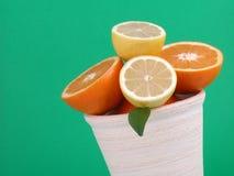 Sinaasappelen en citroenen stock afbeelding